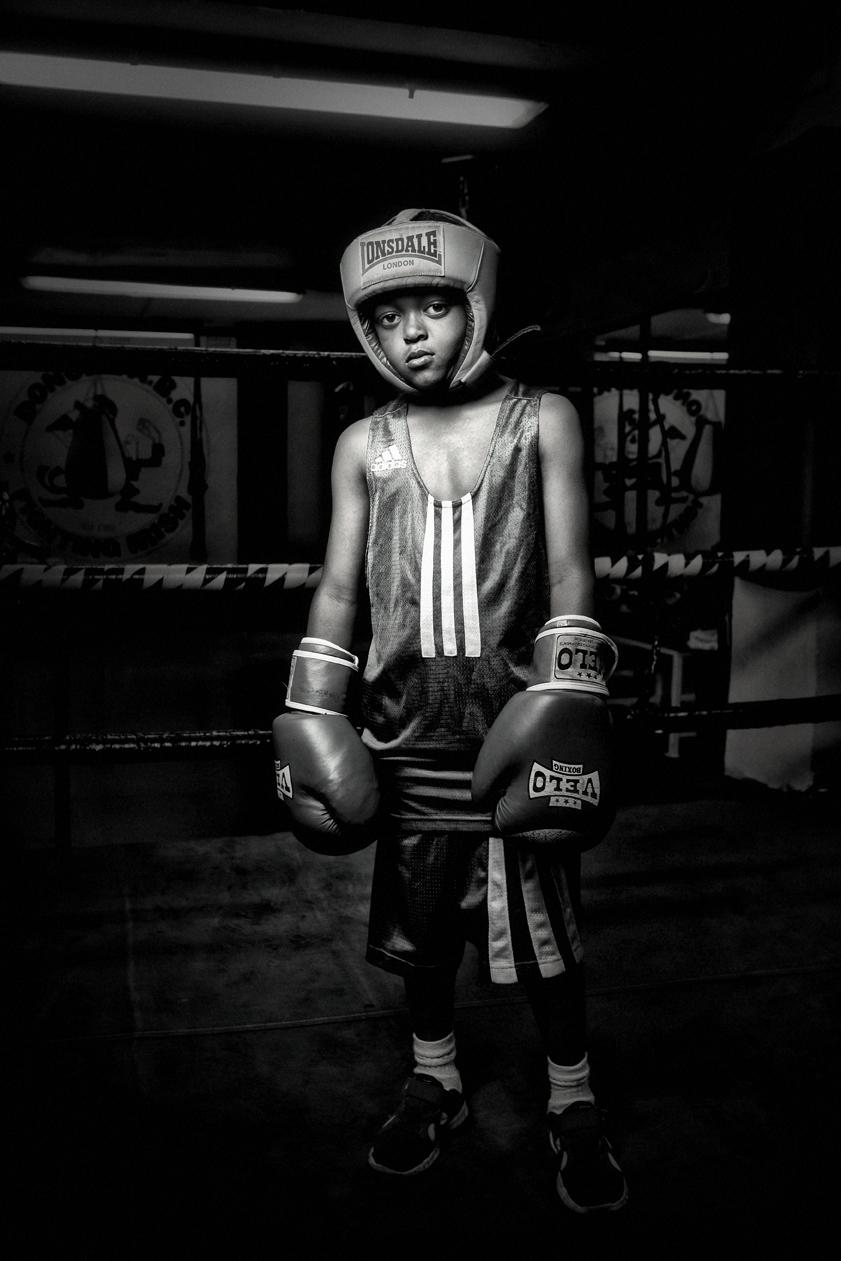 Little Boxer