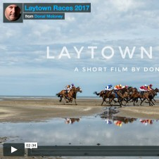Laytown Profile